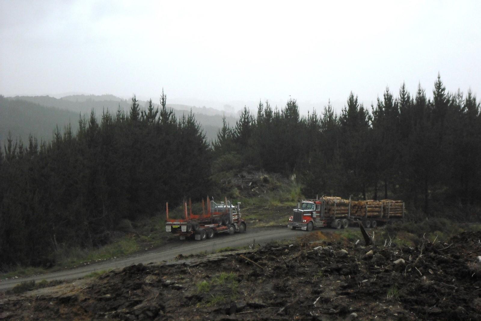 Trucks RT.jpg