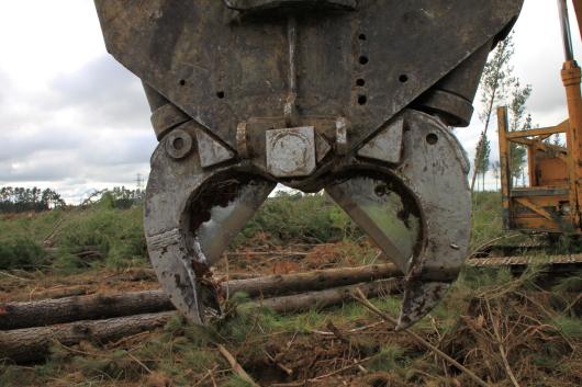 Log Shear